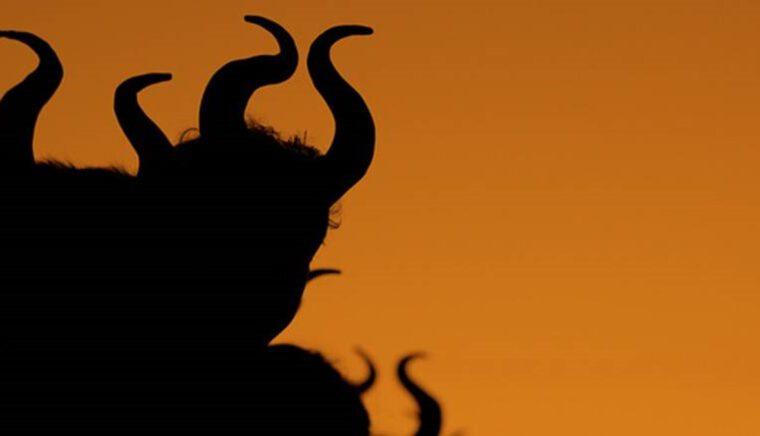 قصة قصيرة عن ساكت عن الحق شيطان أخرس